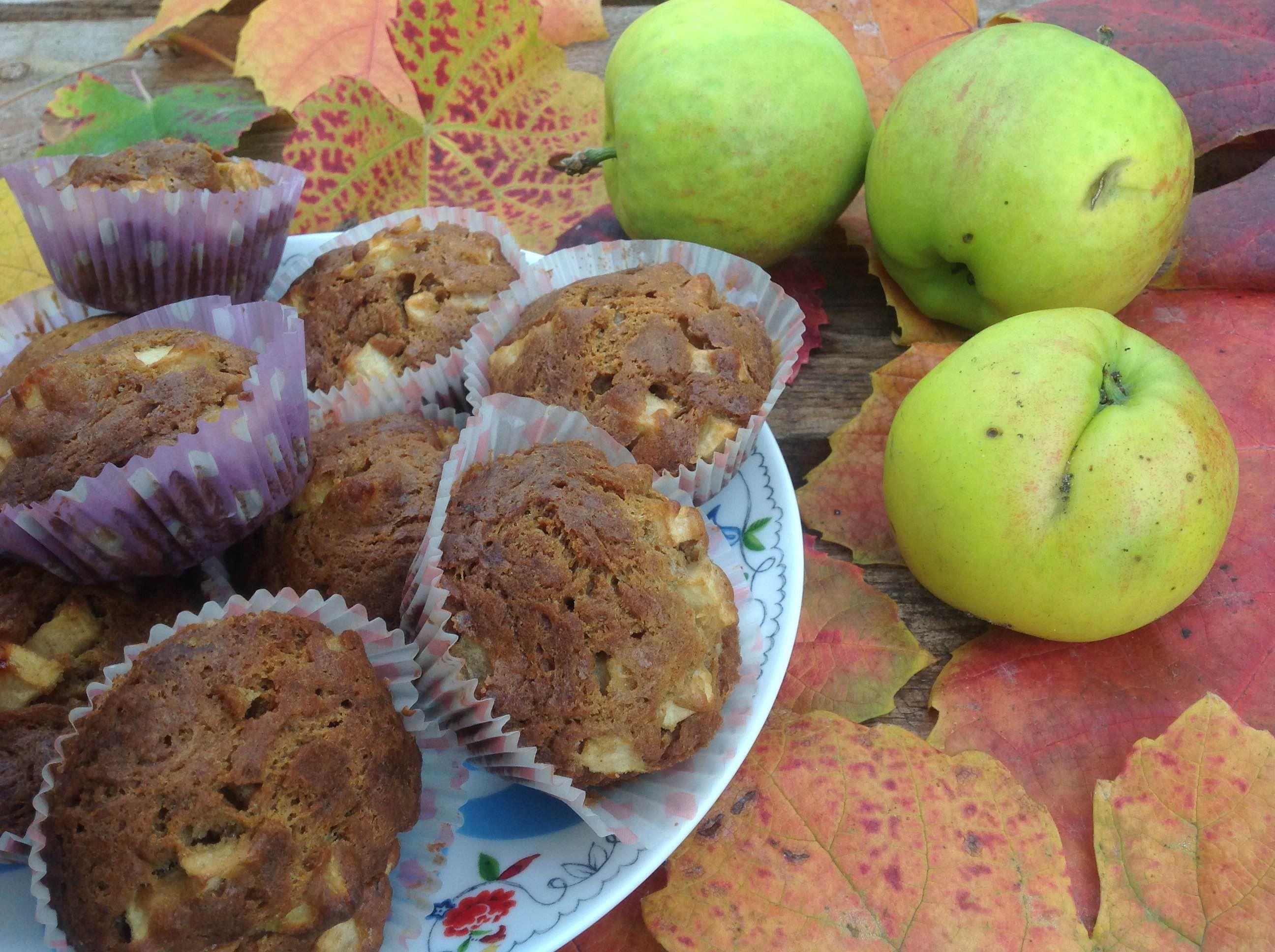 Appelcupcakes