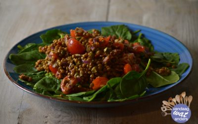 Linzensalade met tomaatjes en kappertjes